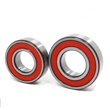 Wm Superior Quality Deep Groove Ball Bearings (6004 2RS)